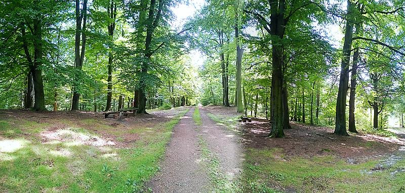 WP_20140815_12_24_23_Panorama (2)